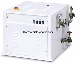 Générateur vapeur électrique MAXI 60.